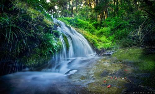 forest-5222x3185-rocks-trees-plants-waterfall-river-5838e990.jpg