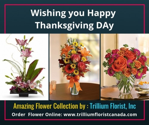 Thanksgiving-Day-Flowers-Canadaafb5ba3084089a94.jpg