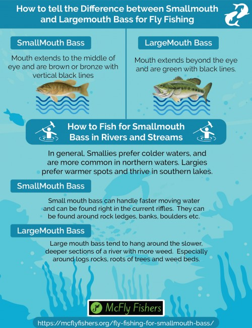 Fly-Fishing-for-Smallmouth-Bass-in-Lakes-and-Rivers-Infographic978778a114c6f3ac.jpg
