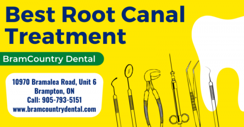 Best-Root-Canal-Treatment55f71e802bb66d56.png