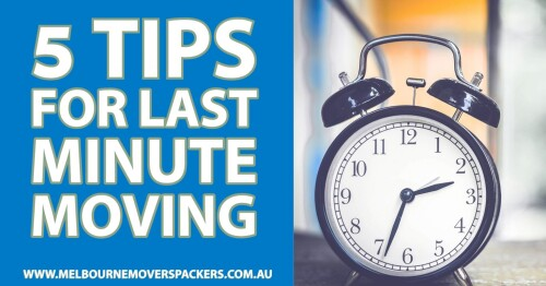 5-Tips-for-Last-Minute-Moving-1536x80474137a9a051d13f5.jpg