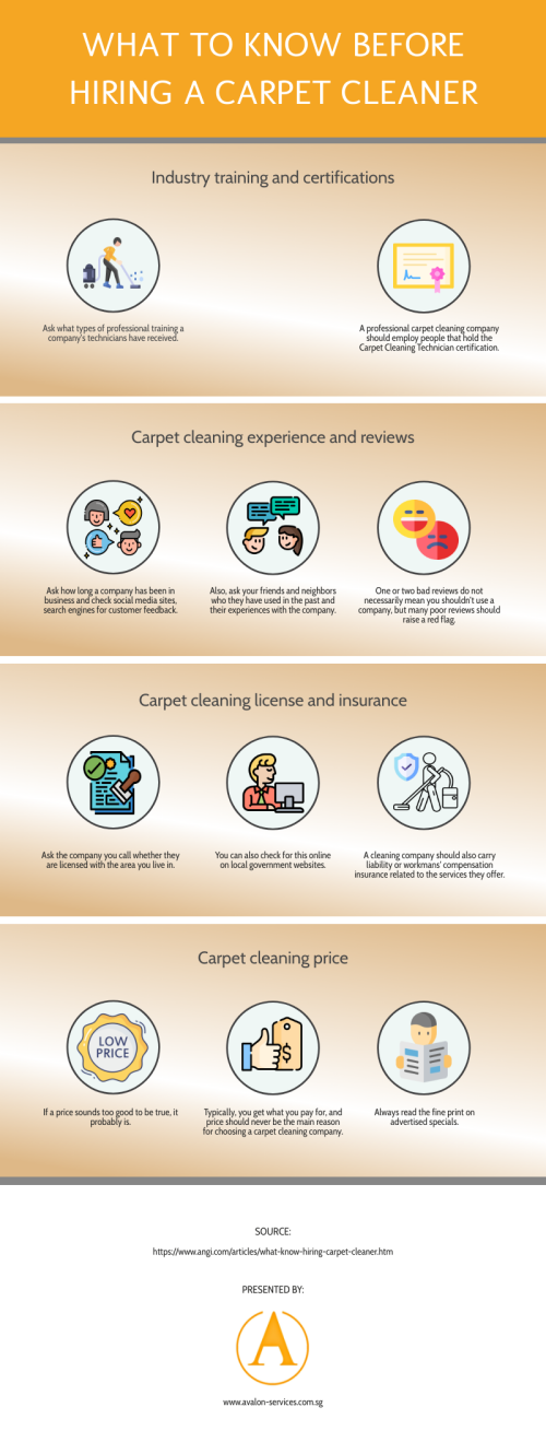 what-to-know-before-hiring-a-carpet-cleanere260de49f079ca19.png