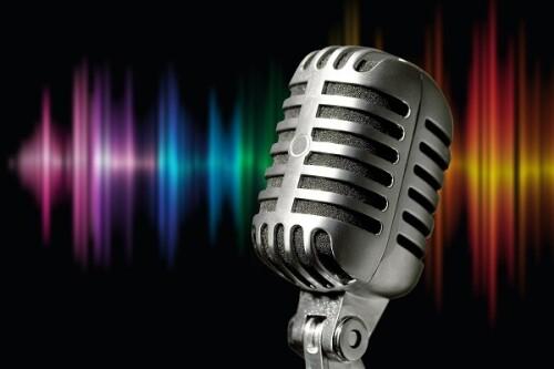 Audio_Description_Page8d358c546c74f369.jpg