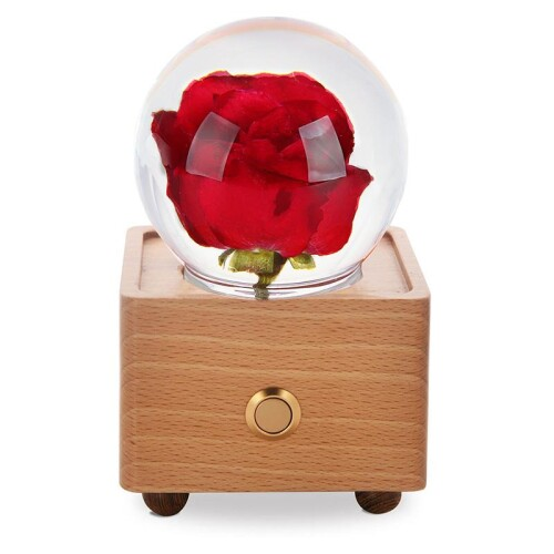 Buy real preserved flower wireless Bluetooth speaker https://cdn.shopify.com/s/files/1/0059/8769/6704/products/Red_Rose_2_1024x1024@2x.jpg?v=1628178338